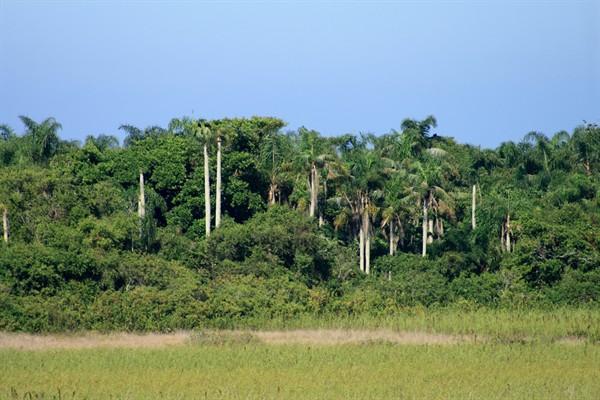 Vilatur-Reserva-Jacarepia
