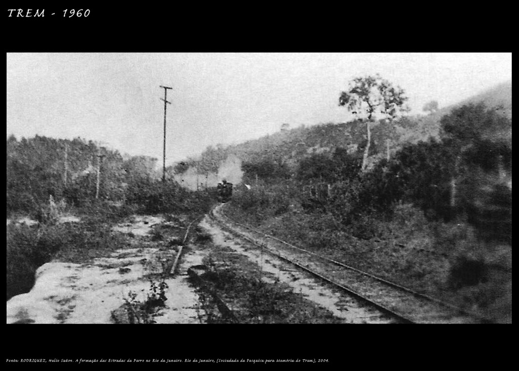 Estrada-de-ferro-Marica(35)