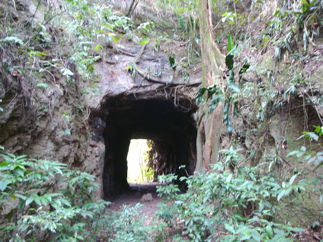 Estrada-de-ferro-Marica(61)